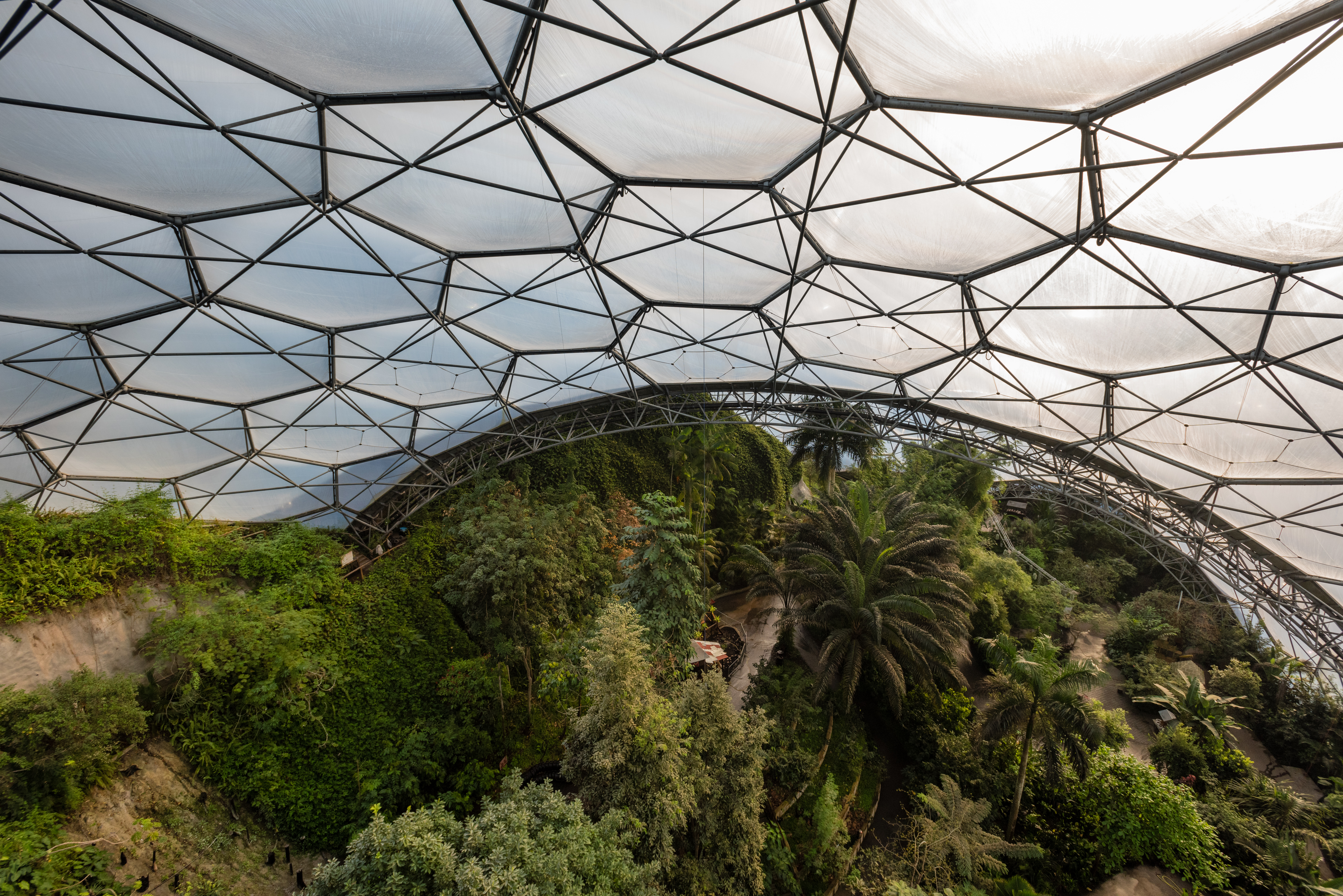 Filming VR at the Eden Project in Cornwall on the Nokia Ozo camera for Atlantic Productions